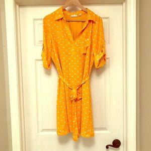 Gold Polka Dot Dress
